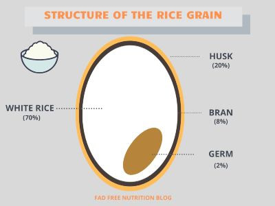 A simplified diagram of the structure of the rice grain